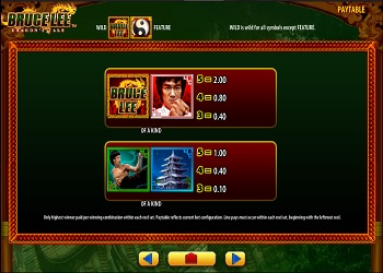 Bruce Lee Dragon's Screenshot 3